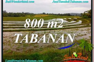 FOR SALE Magnificent PROPERTY 800 m2 LAND IN Tabanan Selemadeg BALI TJTB324