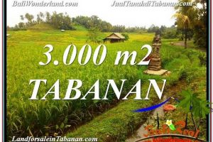 Affordable PROPERTY Tabanan Selemadeg 3,000 m2 LAND FOR SALE IN BALI TJTB328