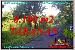 Affordable PROPERTY 8,100 m2 LAND IN Tabanan Marga BALI FOR SALE TJTB329