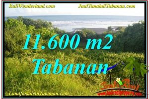 Exotic PROPERTY LAND IN TABANAN BALI FOR SALE TJTB340