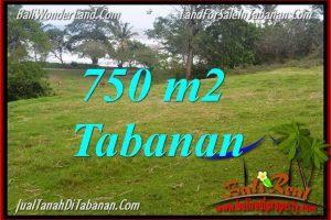 Beautiful 750 m2 LAND SALE IN TABANAN BALI TJTB346