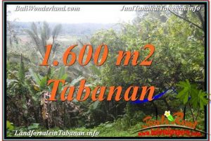 Exotic LAND FOR SALE IN TABANAN TJTB348