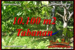 FOR SALE 10,100 m2 LAND IN TABANAN BALI TJTB360