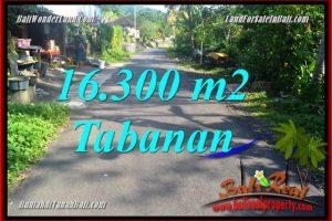 Beautiful PROPERTY Tabanan Selemadeg Barat 16,300 m2 LAND FOR SALE TJTB361