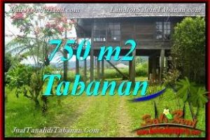 Exotic PROPERTY 750 m2 LAND FOR SALE IN TABANAN Bedugul BALI TJTB370