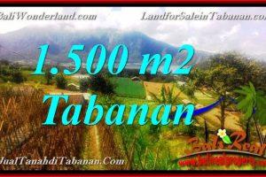 Affordable 1,500 m2 LAND SALE IN TABANAN BALI TJTB373