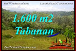 Magnificent LAND IN Tabanan Selemadeg BALI FOR SALE TJTB378