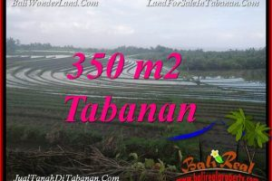 Exotic 350 m2 LAND IN TABANAN SELEMADEG BALI FOR SALE TJTB386