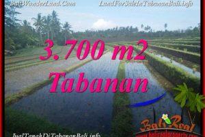 Exotic LAND FOR SALE IN TABANAN BALI TJTB388