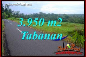 Exotic Property Tabanan Bali Land for sale TJTB402