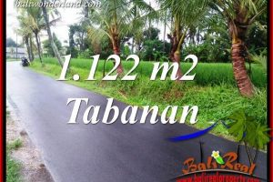Affordable Tabanan Bali 1,122 m2 Land for sale TJTB404
