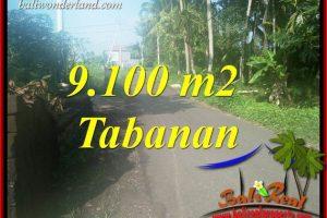 9,100 m2 Land in Tabanan Bali for sale TJTB407
