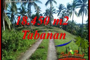 Beautiful Property Tabanan Bali Land for sale TJTB410