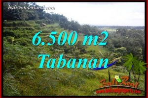 FOR sale Magnificent Land in Tabanan TJTB416