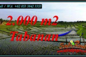 Affordable PROPERTY 2,000 m2 LAND SALE IN KERAMBITAN TABANAN BALI TJTB493