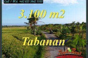 Affordable TABANAN BALI LAND FOR SALE TJTB496