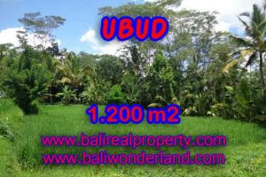 Outstanding Property in Bali for sale, land in Ubud for sale – TJUB404