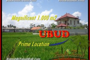 FOR SALE Beautiful PROPERTY LAND IN Sentral Ubud BALI TJUB445