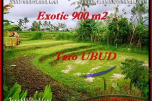 Affordable 900 m2 LAND IN UBUD FOR SALE TJUB464