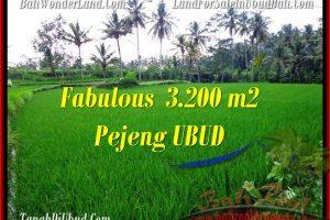 Affordable 3,200 m2 LAND SALE IN UBUD TJUB484