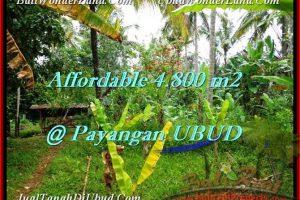 Affordable LAND IN Ubud Payangan BALI FOR SALE TJUB486
