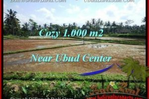 Magnificent PROPERTY LAND IN UBUD FOR SALE TJUB501