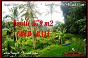 Beautiful PROPERTY LAND SALE IN UBUD TJUB538