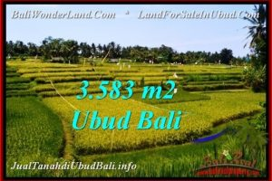 FOR SALE Beautiful PROPERTY 3,583 m2 LAND IN Ubud Pejeng TJUB542