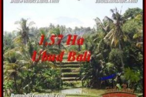 Beautiful LAND IN UBUD FOR SALE TJUB549