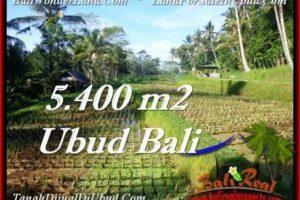 Affordable PROPERTY LAND FOR SALE IN UBUD TJUB554