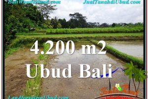 Affordable LAND SALE IN Ubud Tampak Siring BALI TJUB561