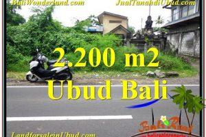 2,200 m2 LAND FOR SALE IN UBUD BALI TJUB565