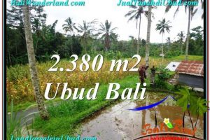 Affordable 2,380 m2 LAND IN UBUD BALI FOR SALE TJUB567