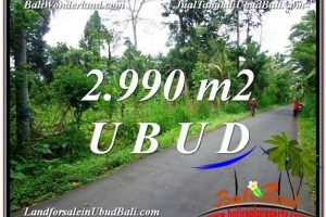 Magnificent LAND FOR SALE IN UBUD TJUB591