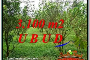 Beautiful LAND IN UBUD FOR SALE TJUB593