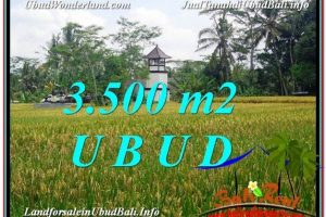 FOR SALE Beautiful LAND IN Ubud Tegalalang BALI TJUB596