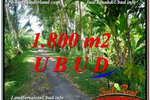 Exotic PROPERTY LAND SALE IN UBUD TJUB597