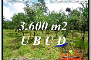FOR SALE Magnificent PROPERTY LAND IN UBUD TJUB599
