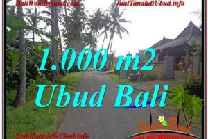 FOR SALE Exotic PROPERTY LAND IN Ubud Pejeng BALI TJUB604