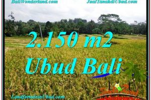 Affordable Ubud Tegalalang LAND FOR SALE TJUB606