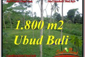 Exotic 1,800 m2 LAND SALE IN UBUD TJUB610