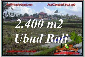 Beautiful PROPERTY LAND IN UBUD FOR SALE TJUB620