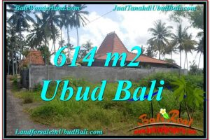 Affordable LAND IN Sentral Ubud BALI FOR SALE TJUB622