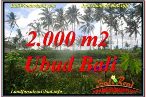 Exotic UBUD BALI 2,000 m2 LAND FOR SALE TJUB625