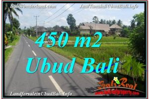 Exotic PROPERTY 450 m2 LAND IN Sentral / Ubud Center BALI FOR SALE TJUB647