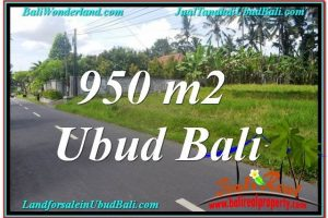 Beautiful PROPERTY Sentral / Ubud Center BALI 950 m2 LAND FOR SALE TJUB648