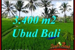 Magnificent PROPERTY UBUD BALI 3,400 m2 LAND FOR SALE TJUB656