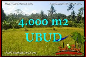 Beautiful PROPERTY 4,000 m2 LAND SALE IN UBUD BALI TJUB661