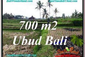 700 m2 LAND FOR SALE IN UBUD BALI TJUB666