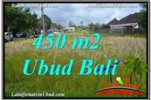 Magnificent PROPERTY 450 m2 LAND IN SENTRAL UBUD BALI FOR SALE TJUB671